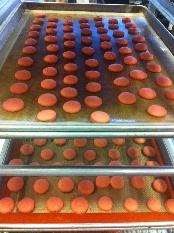 Vários macarons secando (=